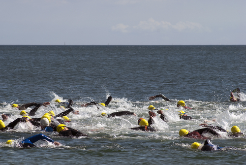 athletes swimming in open water